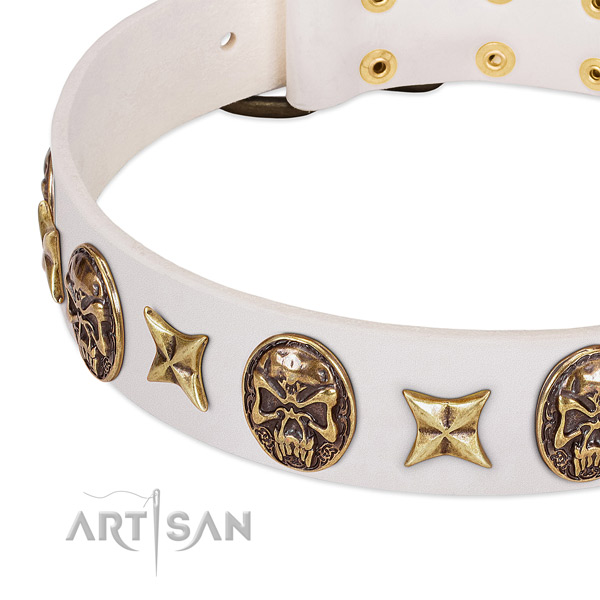Best quality dog collar handcrafted for your beautiful pet