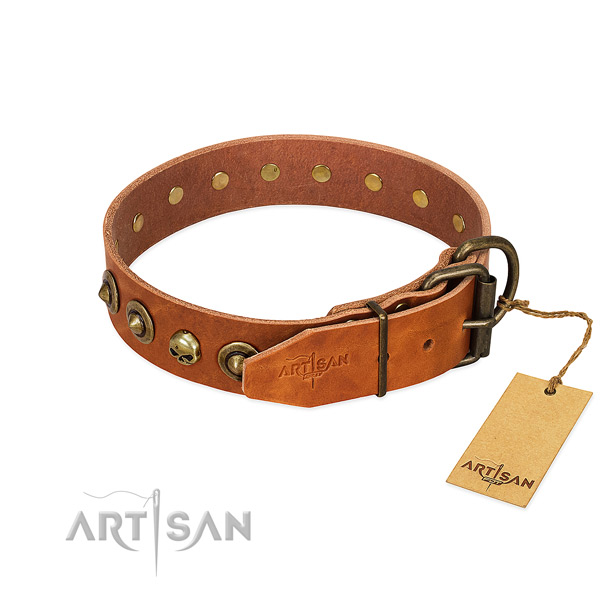 Full grain genuine leather collar with unusual embellishments for your pet
