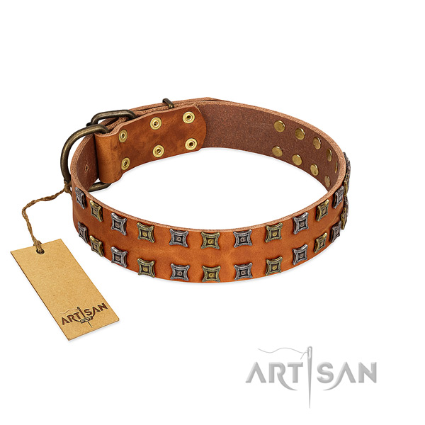 Flexible natural leather dog collar with embellishments for your pet