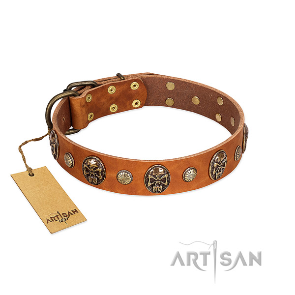 Inimitable full grain leather dog collar for everyday use