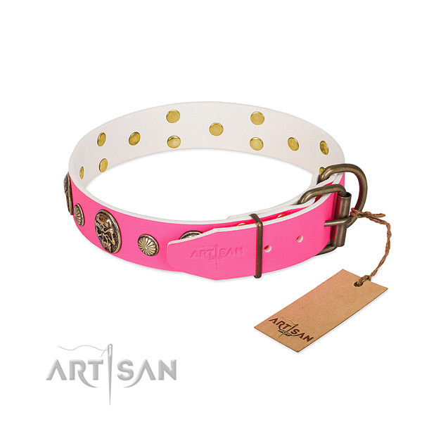 Rust resistant fittings on genuine leather dog collar for your dog