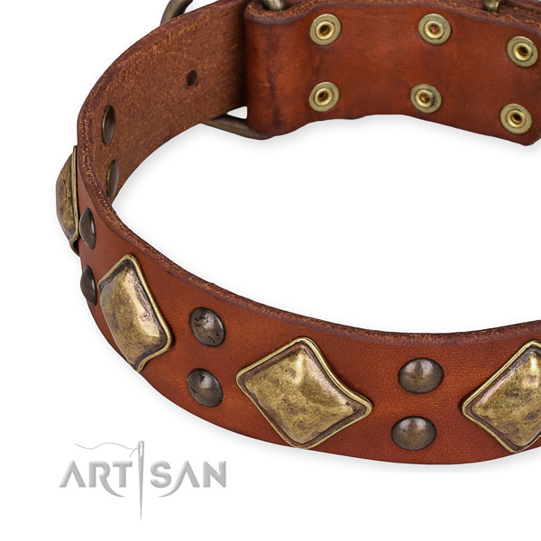 Full grain genuine leather collar with rust-proof traditional buckle for your beautiful four-legged friend