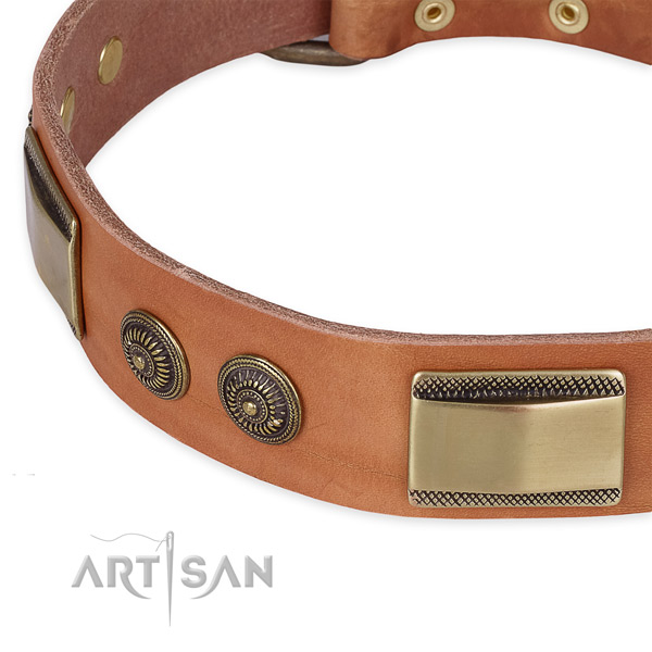 Corrosion resistant embellishments on full grain genuine leather dog collar for your pet