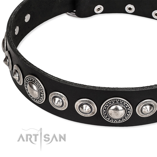 Fancy walking embellished dog collar of high quality full grain genuine leather