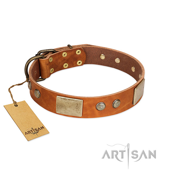 Easy adjustable full grain genuine leather dog collar for basic training your four-legged friend