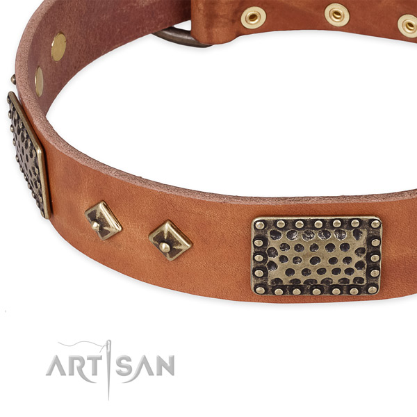 Reliable D-ring on natural leather dog collar for your canine