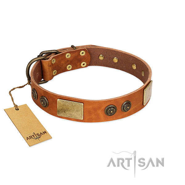 Easy to adjust genuine leather dog collar for fancy walking