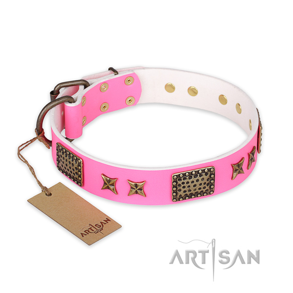 Studded full grain leather dog collar with rust-proof traditional buckle