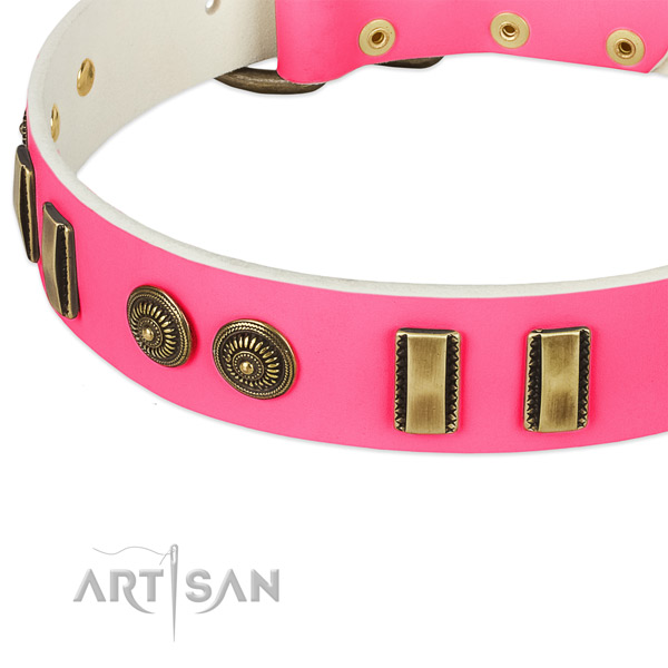 Corrosion proof embellishments on genuine leather dog collar for your dog