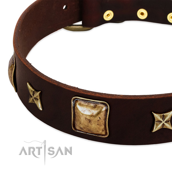 Corrosion proof hardware on full grain leather dog collar for your pet