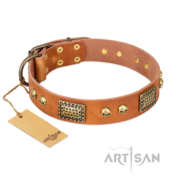 Adjustable full grain natural leather dog collar for walking your dog