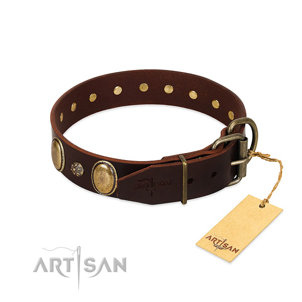 Daily use top notch leather dog collar