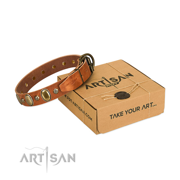 Easy adjustable genuine leather dog collar with rust resistant hardware