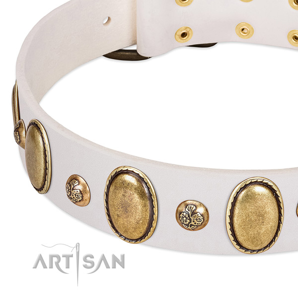 Leather dog collar with impressive embellishments