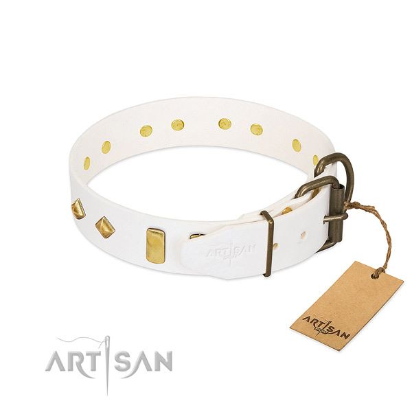 Reliable full grain leather dog collar with strong buckle