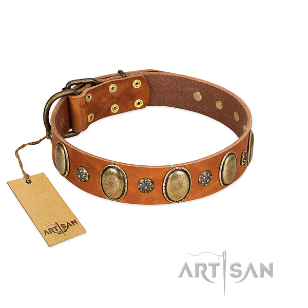 Fancy walking best quality full grain natural leather dog collar with studs