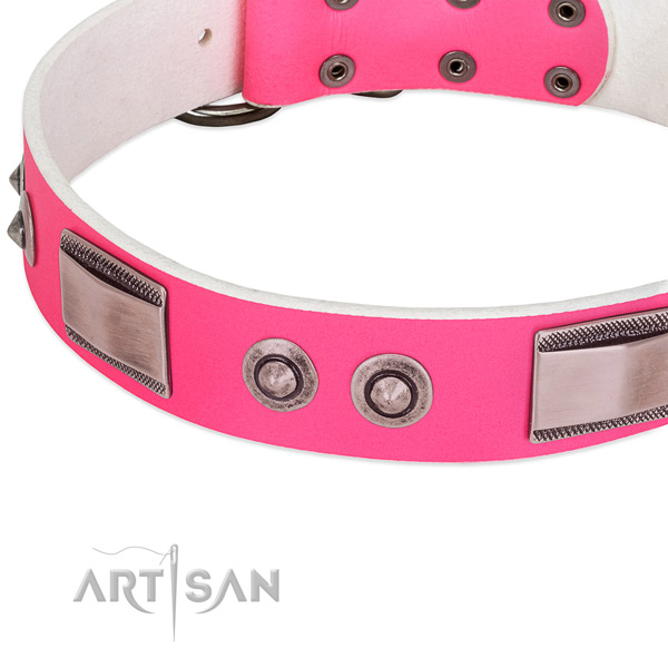 Incredible full grain genuine leather collar with adornments for your dog