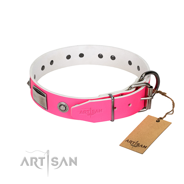 Trendy leather collar with adornments for your four-legged friend
