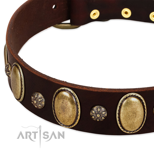 Walking flexible leather dog collar