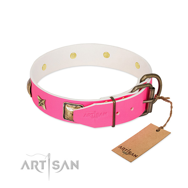 Corrosion resistant hardware on leather collar for walking your dog
