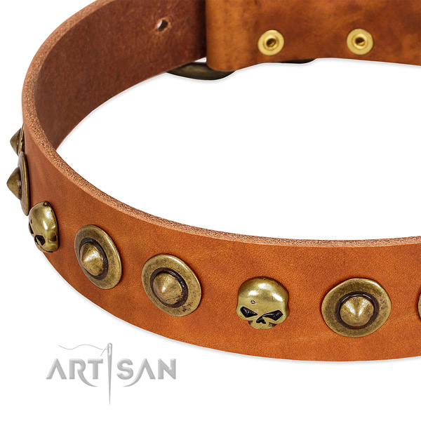 Extraordinary decorations on leather collar for your doggie