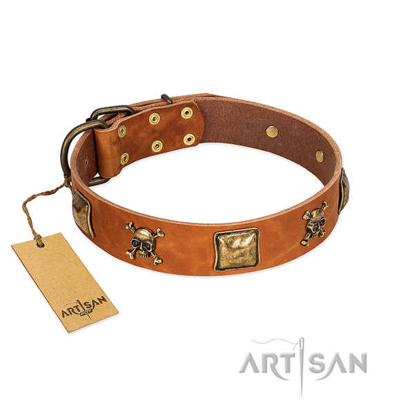 Designer full grain natural leather dog collar with corrosion resistant decorations