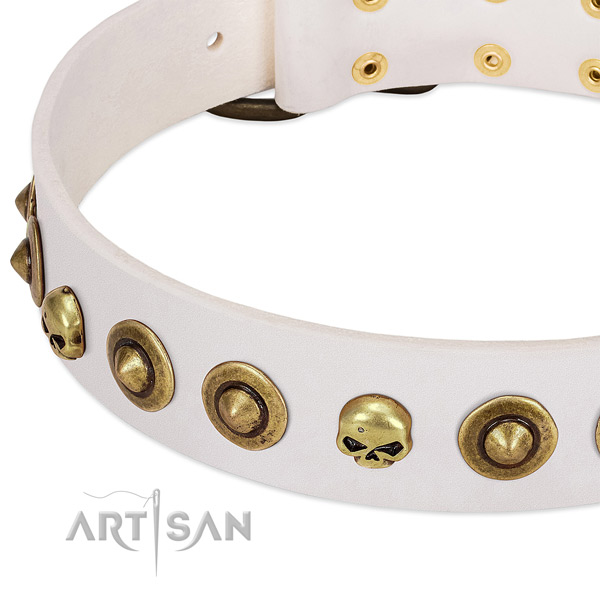 Extraordinary adornments on genuine leather collar for your doggie