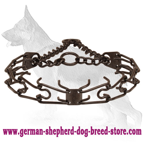 Rust resistant black stainless steel prong collar for ill behaved dogs