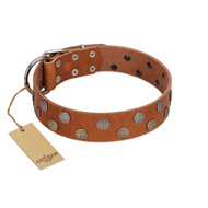 """Ancient Symbol"" Trendy FDT Artisan Tan Leather German Shepherd Collar with Silver- and Gold-Like Studs"