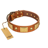 """Mutt The Daredevil"" FDT Artisan Tan Leather German Shepherd Collar with Old Bronze-like Skulls and Plates"