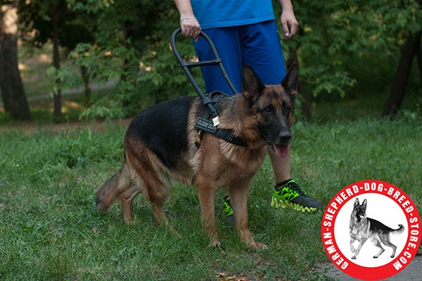 Strong Leather Dog Harness for Guide German Shepherd
