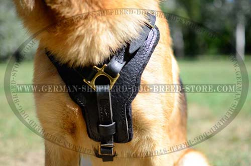 Extracool German Shepherd Harness