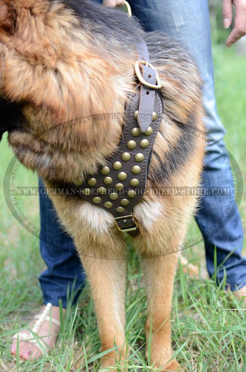 De Luxe German Shepherd Dog Harness