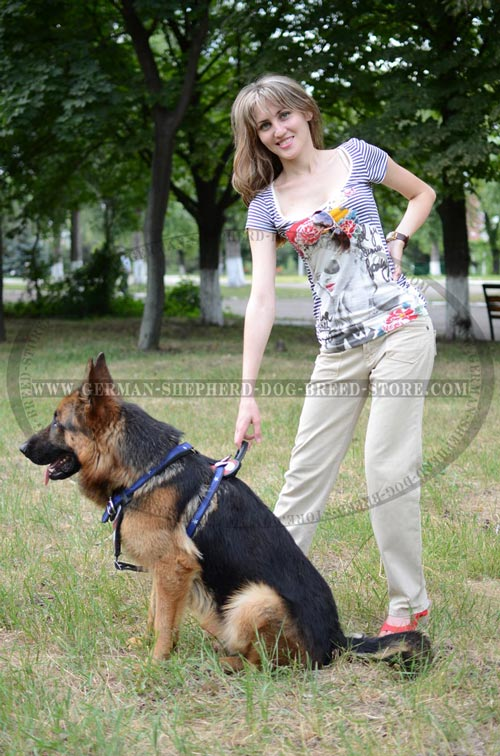 Great German Shepherd Dog Harness