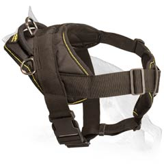 Majestic German Shepherd Dog Harness
