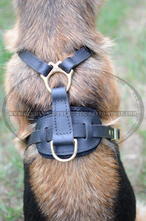 German Shepherd Dog Harness That Perfectly Fits Your Pet