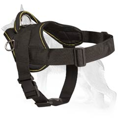 Fine German Shepherd Dog Leather Harness