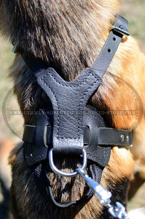 German Shepherd Harness Handle and Ring for Dog Control