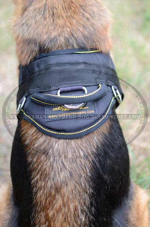 Nylon Handle On Dog Harness Reliable