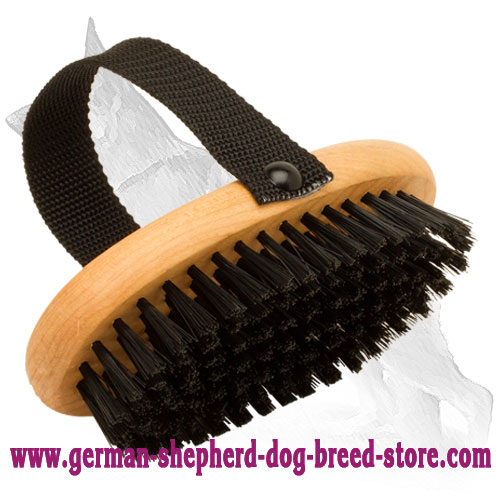 All Coat Types Daily Grooming Bristle Brush