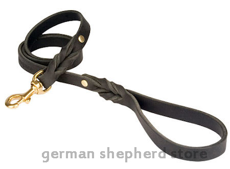 Choose quality dog leash