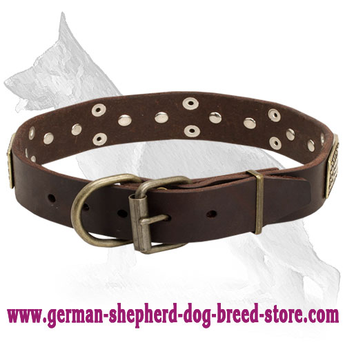 Leather German Shepherd Collar with Brass Plates and Nickel Plated Cones