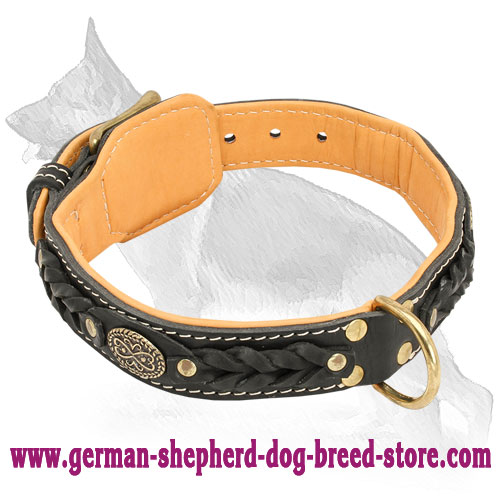 Nappa Padded Leather German Shepherd Collar with Braids and Oval Plates