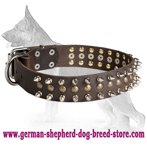 Leather German Shepherd Collar with Nickel Plated Spikes and Brass Studs