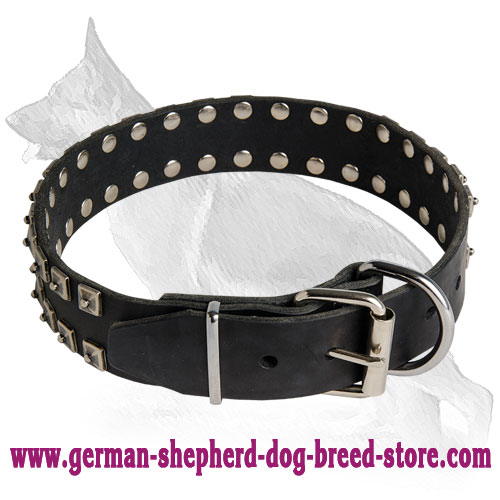 "Leather German Shepherd Collar with ""Caterpillar"" Nickel Plated Studs"