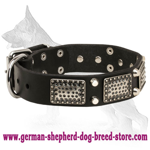Leather German Shepherd Collar with Vintage Plates and Cones