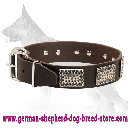 Leather German Shepherd Collar with Massive Plates