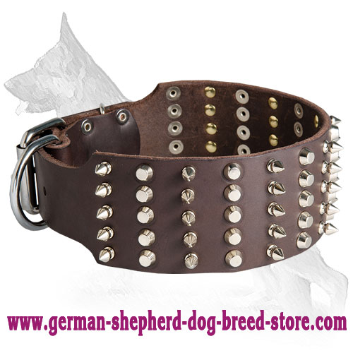 German Shepherd Leather Dog Collar Spikes And Studs