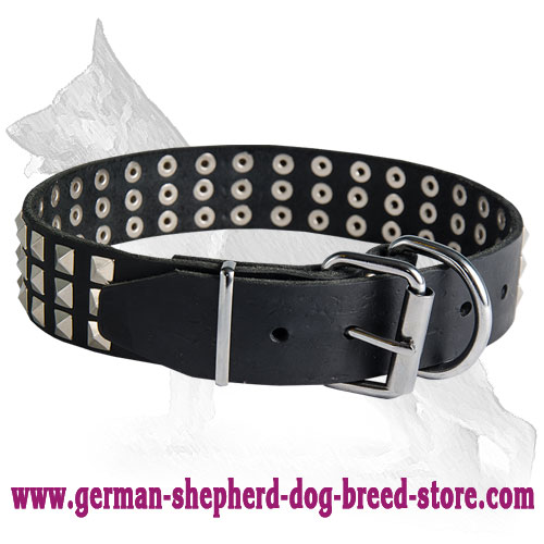 Wide Leather German Shepherd Collar with 3 Rows of Nickel Plated Pyramids