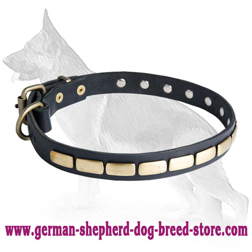 Slide Leather German Shepherd Collar with Brass Plates